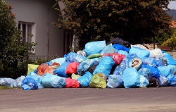 kingston upon thames rubbish collection service kt1